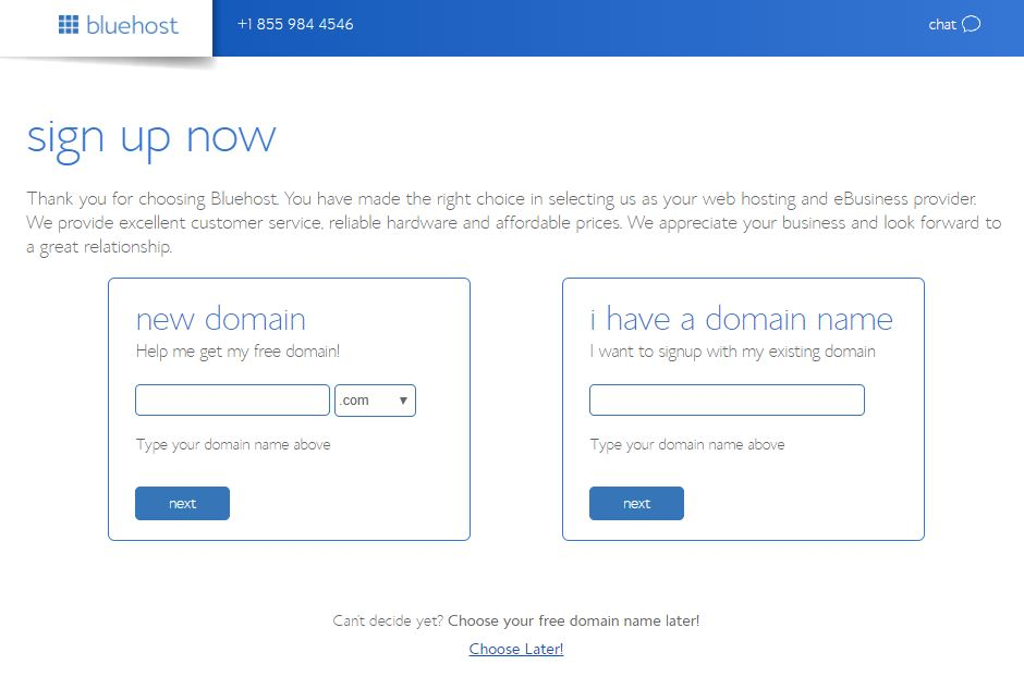 Choosing a Bluehost Domain. I